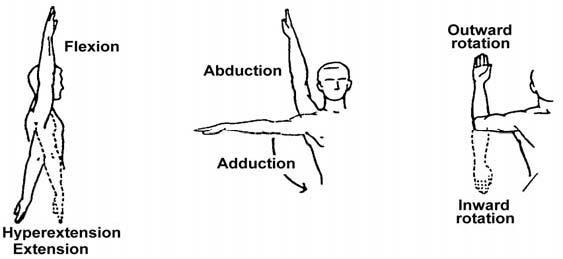 EXERCISES, LESSON 2