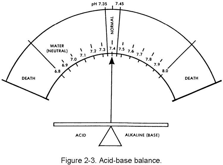 2-6. ACID-BASE BALANCE