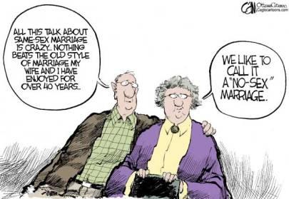 no-sex-marriage-cartoon