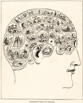 "A drawing of a head, with zones of the skull sectioned off and illustrated with pictures representing their titles - a section for ""acquisitiveness,"" ""language,"" ""hope,"" and more."