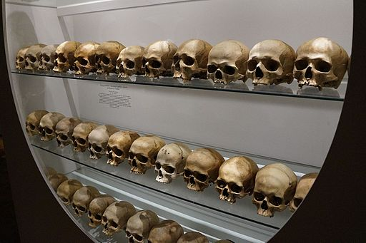 Rows of human skulls in a display case.