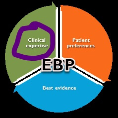 EBP components in Pie chart with Clinical Expertise circled