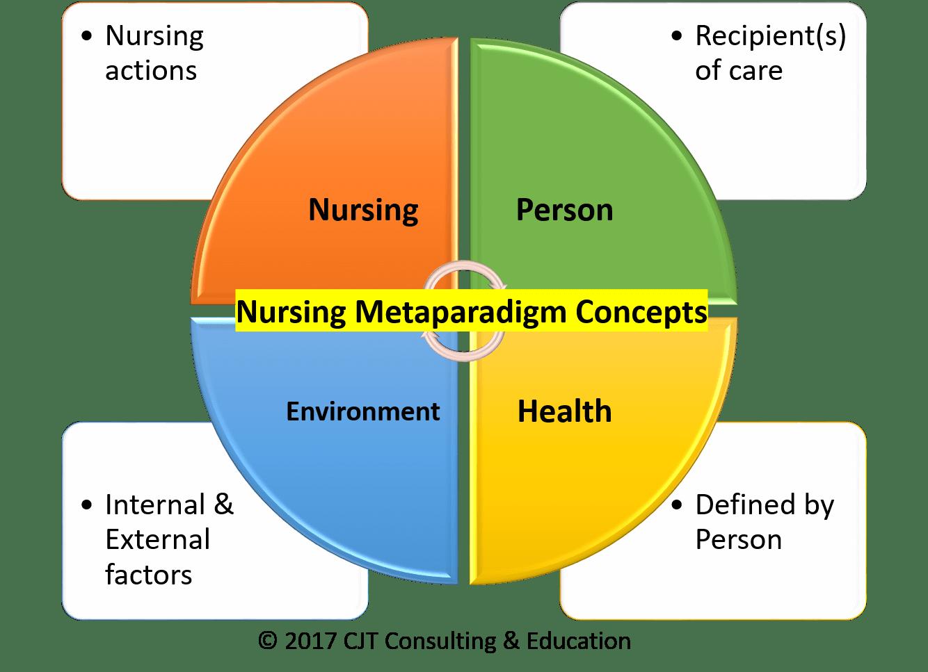 What is the Nursing Metaparadigm? - Nursing Education Expert for Nursing Professional Practice Model  14lpgtk