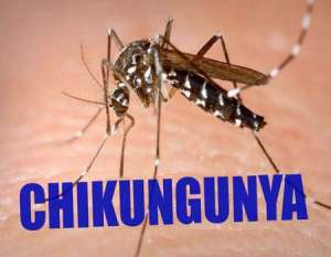 What is Chikungunya Virus?| Cause of Chikungunya | Symptoms of Chikungunya?