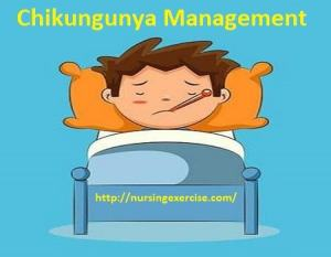Chikungunya Virus Prevention |Nursing Management of Chikungunya Virus