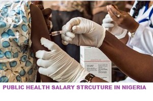Salary Structure of Public Health Workers In Nigeria For 2019