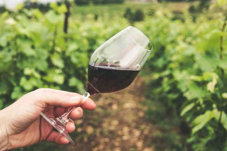 Glass of wine.  Alcohol can actually interfere with getting a good night's sleep.