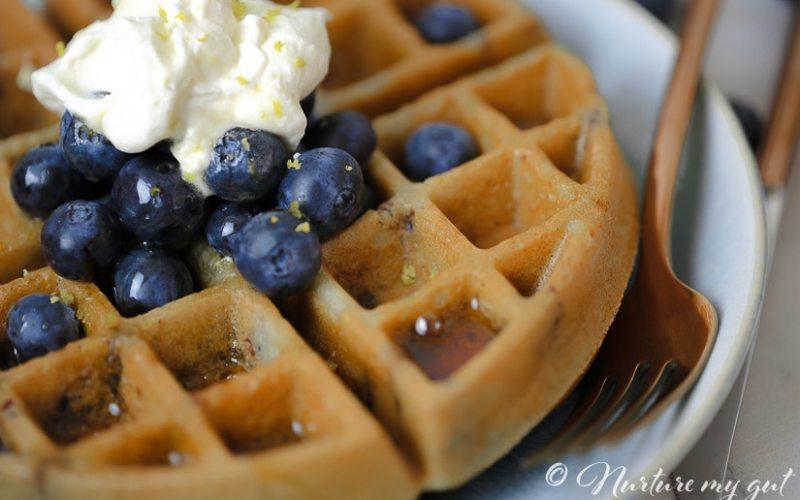 Gluten Free Wild Blueberry Lemon Waffles