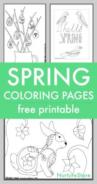 Spring coloring sheets printables for children - NurtureStore