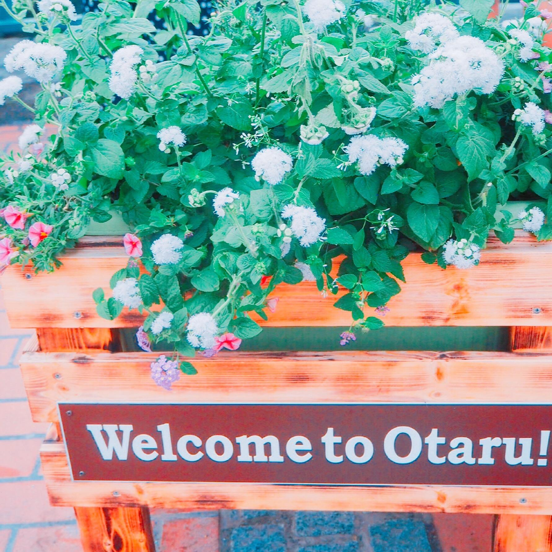 welcome to otaru