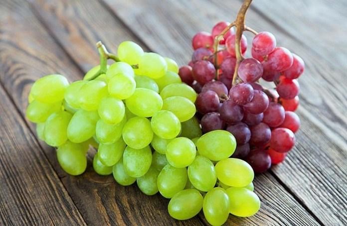 Buah Anggur/Foto: IST