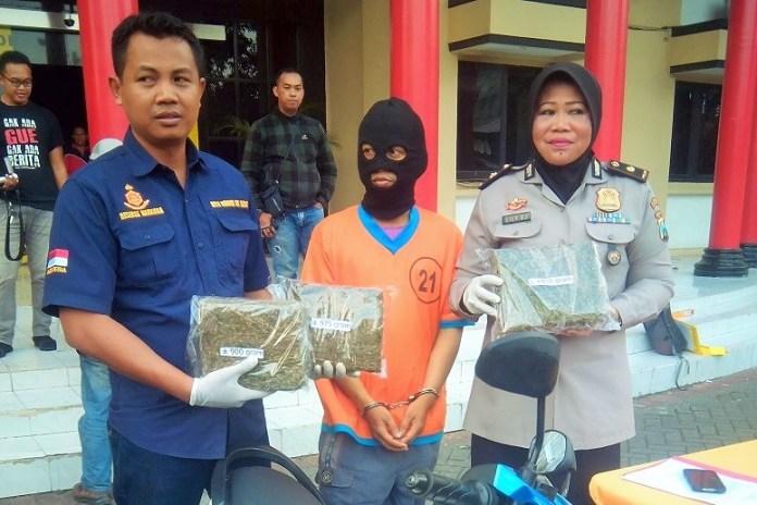 Hendak Jual Ganja Kering, Residivis Kambuhan Dibekuk Polisi Surabaya/Foto Three