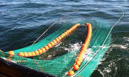 (Ilustrasi) Kapal Cantrang, Nelayan. Foto: Dok. Suara Merdeka