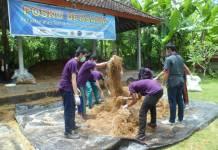 Mahasiswa, Dosen dan masyarakat bekerja sama menyiapkan pakan ternak bagi kebutuhan ternak di daerah yang membutuhkan. (Foto: Istimewa)