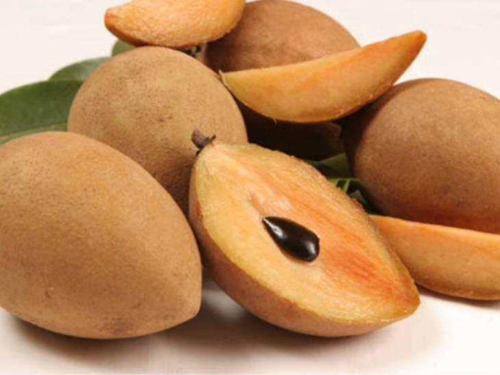 Image result for buah sawo