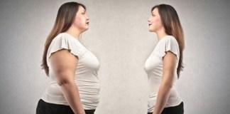Gendut dan kurus