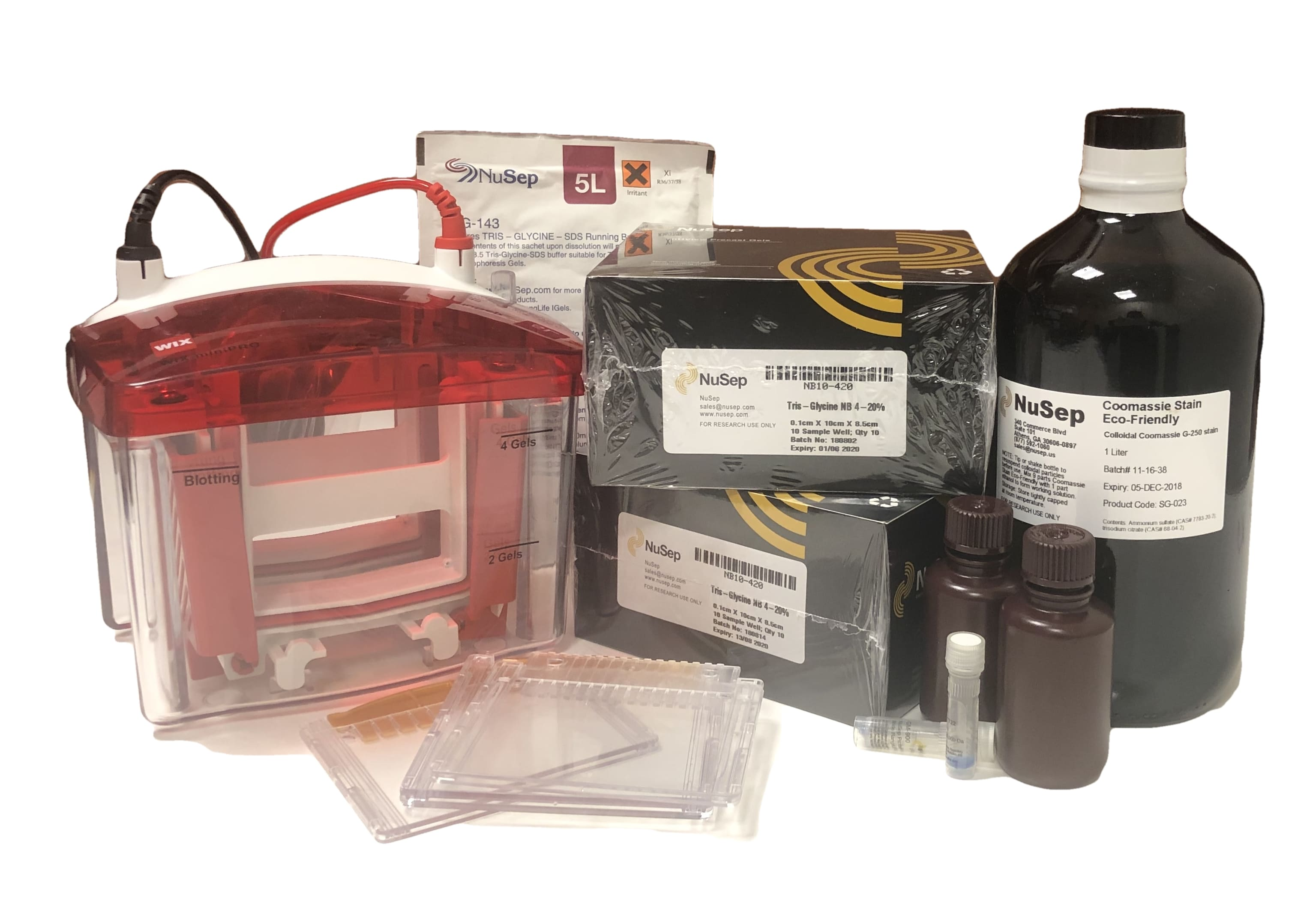 Protein Electrophoresis Supplies - precast gels, gel tank, stain, and buffers