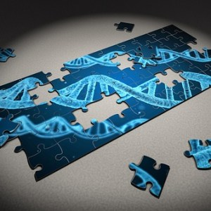 puzzle of DNA