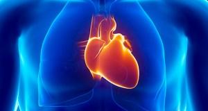 Dil ko swasth rakhne ke 7 nuskhe , 7 Tips for healthy heart