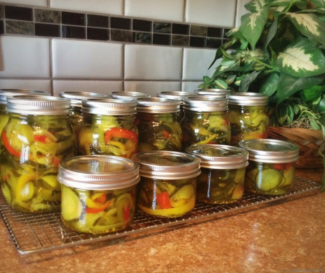 Fresh made pickles in the Nutmeg Disrupted kitchen