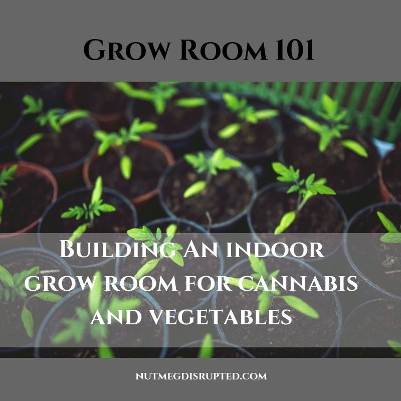 Grow Room 101 Building An Indoor Grow Room for Cannabis and Vegetables on Nutmeg Disrupted