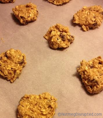 Lentil Oatmeal Chocolate Chip Cookie Dough