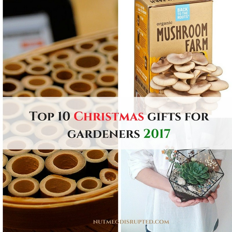 to kick off my new 2018 garden series grow your own food we will start with a fantastic top 1o list of gifts that wont break the bank for the gardener in