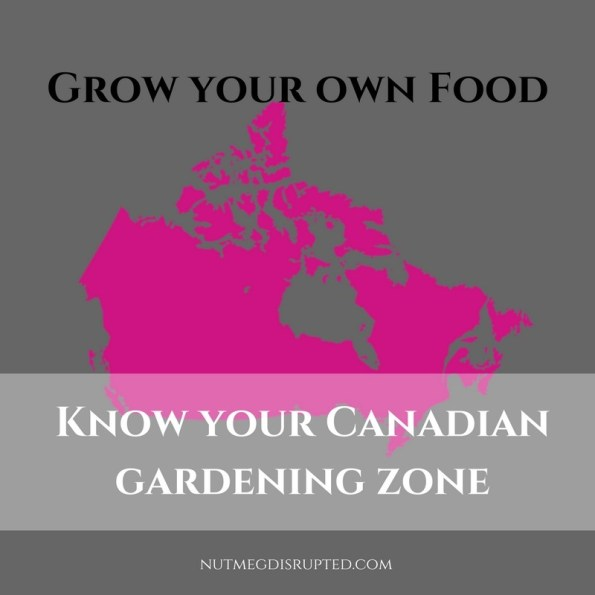 Grow your own Food - Know your canadian gardening zone on Nutmeg Disrupted