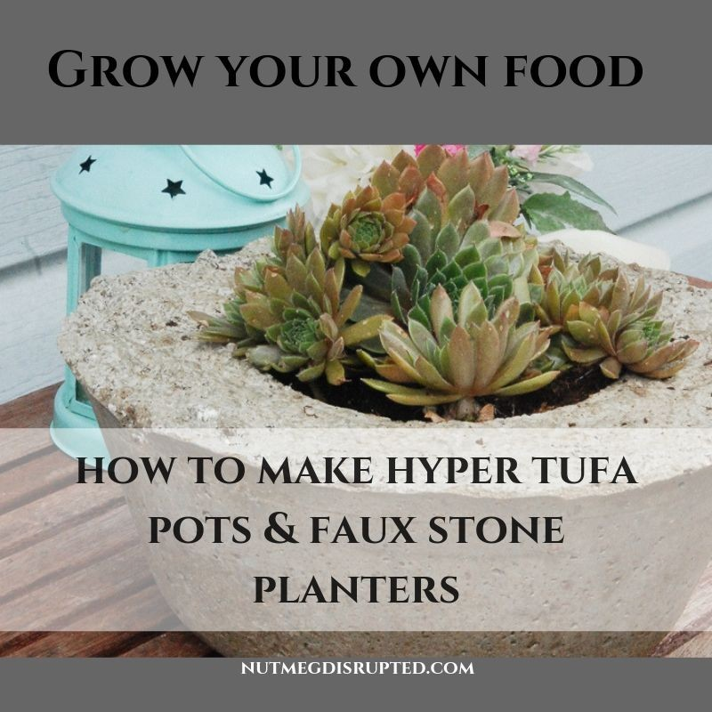 Grow Your Own Food Make A Hypertufa and Faux Stone Planter