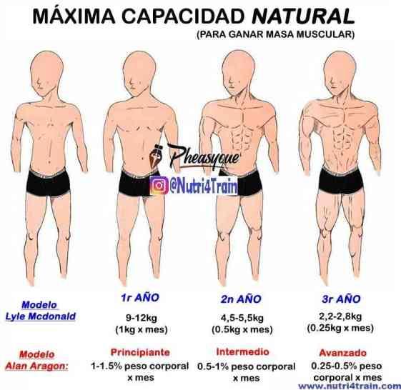 límite genético natural masa muscular
