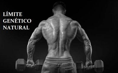 ¿Cuánta masa muscular se puede ganar de manera natural?