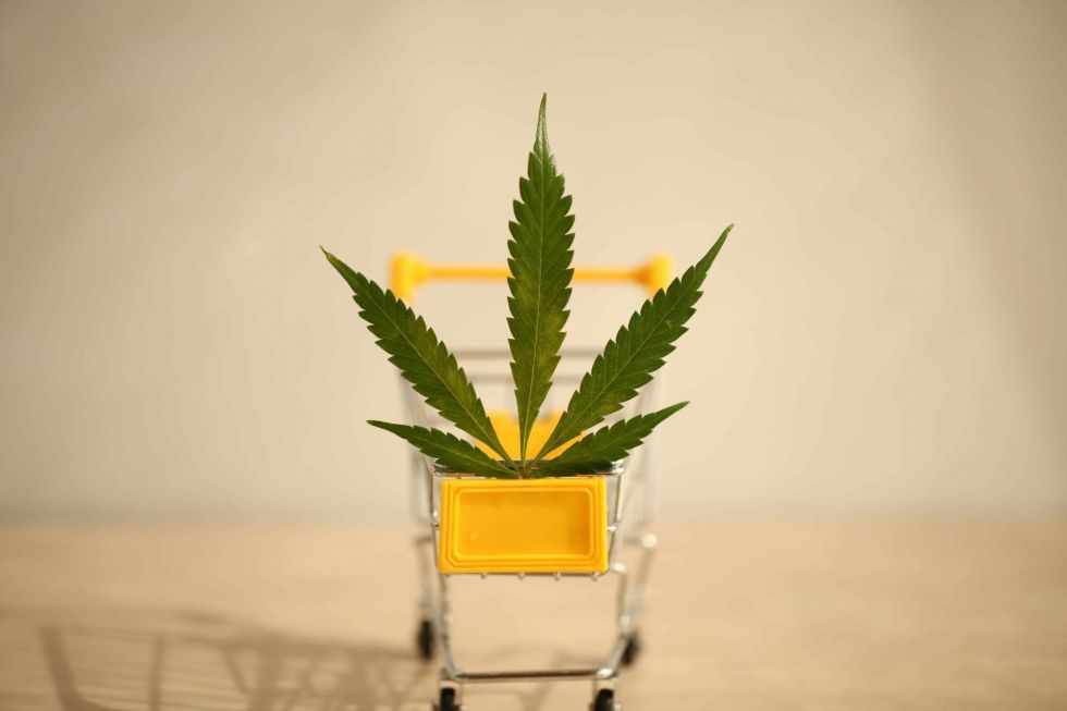 hemp leaf in a yellow shopping cart