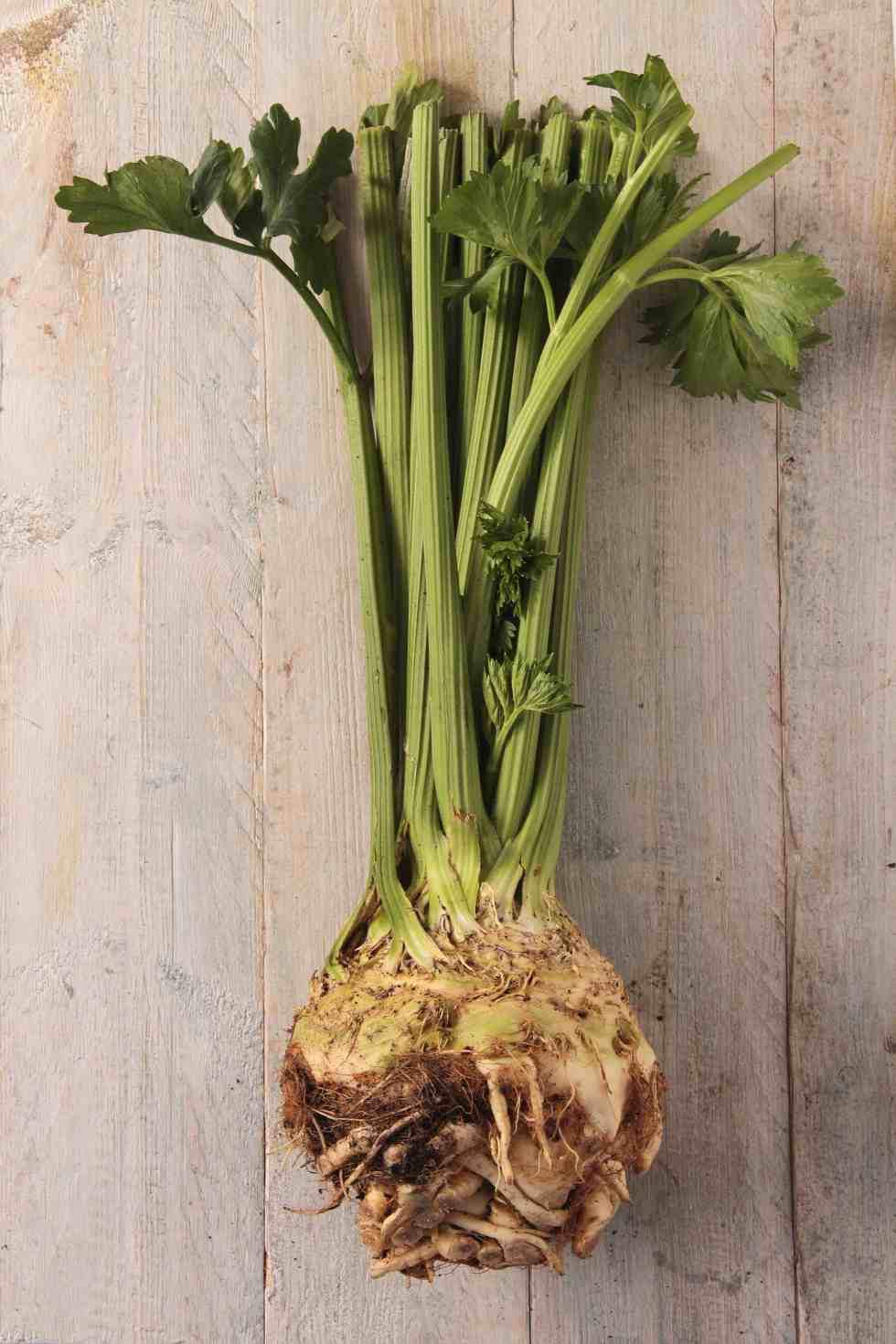 whole celery with root on a wooden table
