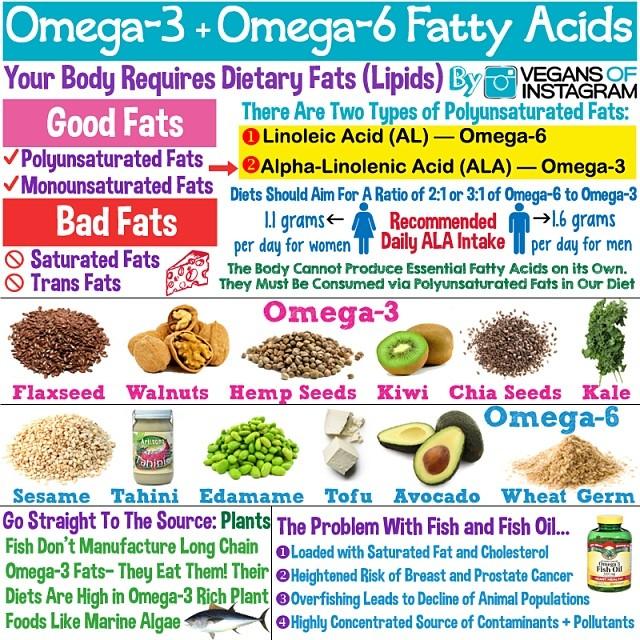Fuentes de cidos grasos omega 3 y 6 en la dieta vegana y