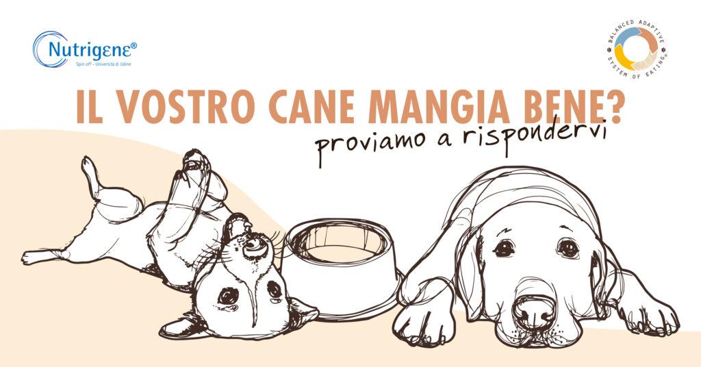 alimentazione nel cane webinar