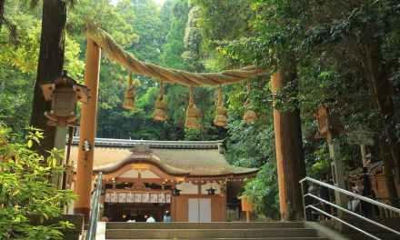 親訪充滿能量的大神神社!來趟心靈沈澱之旅吧~