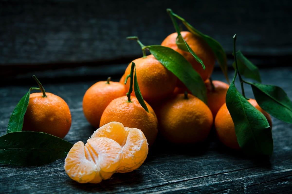 非時香菓-橘子-田道間守-日本神話