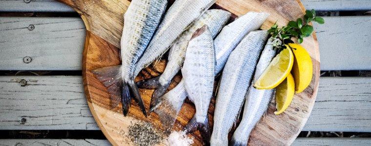 一夜干-魚肉消化-蛋白質消化率