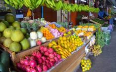 Healthy Nutrition Benefits
