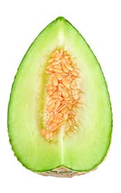 A Melon Slice Showing Inner Flesh and Seeds.