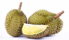 Whole Durian Fruit and One Slice Showing Flesh.