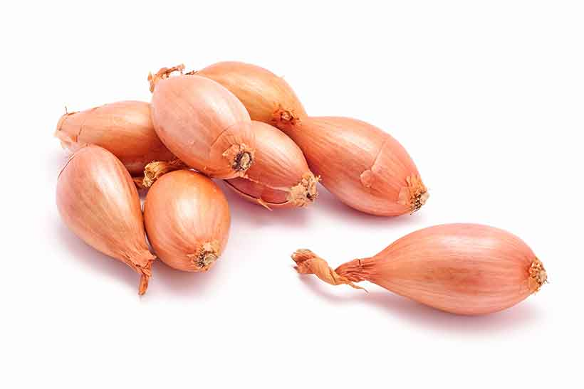 Fresh Organic Shallot Onions in Their Peel/Skin.