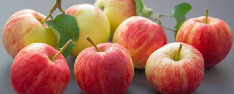 Apples Explained: Nutrients, Health Benefits & How To Prepare