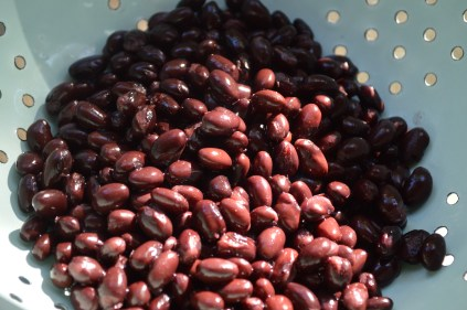 Black Beans Rinsed and Drained for Knock Your Socks Off Veggie Burger