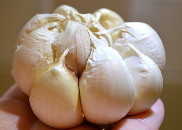 Peeled Paper From Garlic Head for Roasting