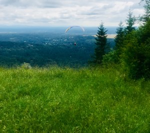 Watching someone parasail from atop Poo Poo Point, Tiger Mountain, Seattle