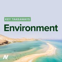 Environment. Sea and sandy beach