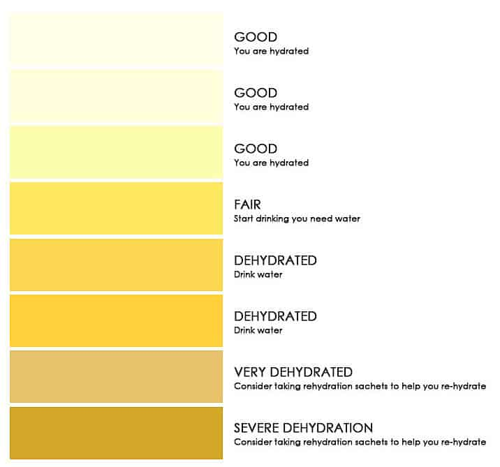 8 color scale urine chart
