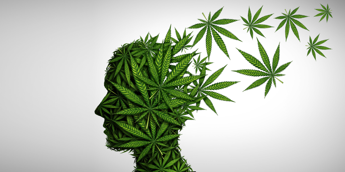 Effects of CBD Against Different Medical Problems 2021