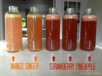 flavoring-kombucha-flavors